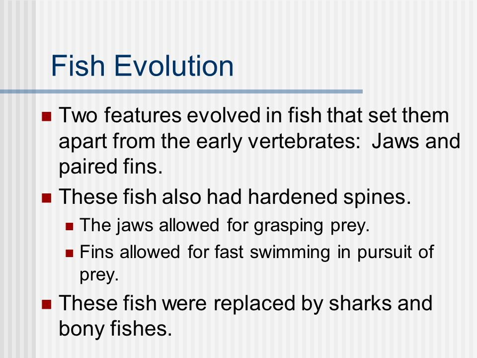 Fish Evolution Two features evolved in fish that set them apart from the early vertebrates: Jaws and paired fins.