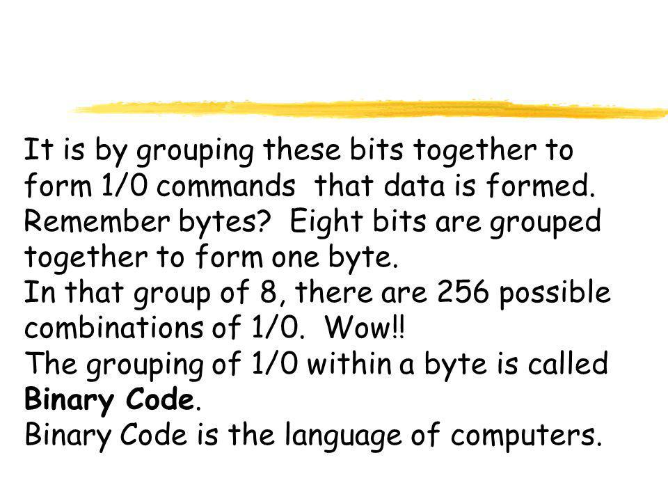 It is by grouping these bits together to form 1/0 commands that data is formed.