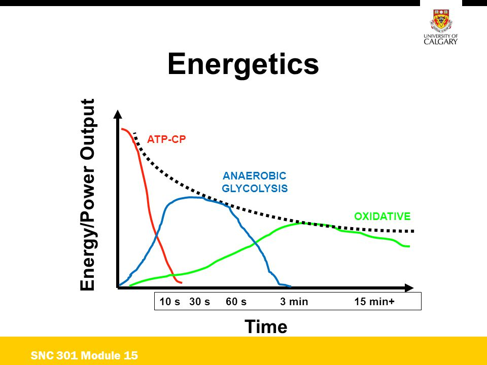 Energetics Energy/Power Output Time SNC 301 Module 15 ATP-CP ANAEROBIC