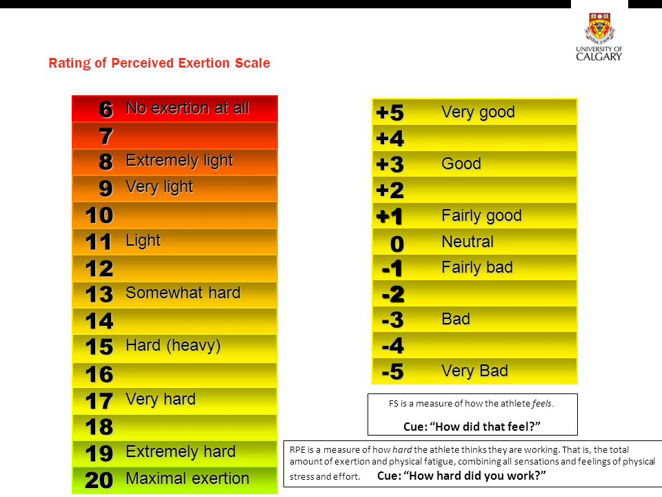 Rating of Perceived Exertion Scale