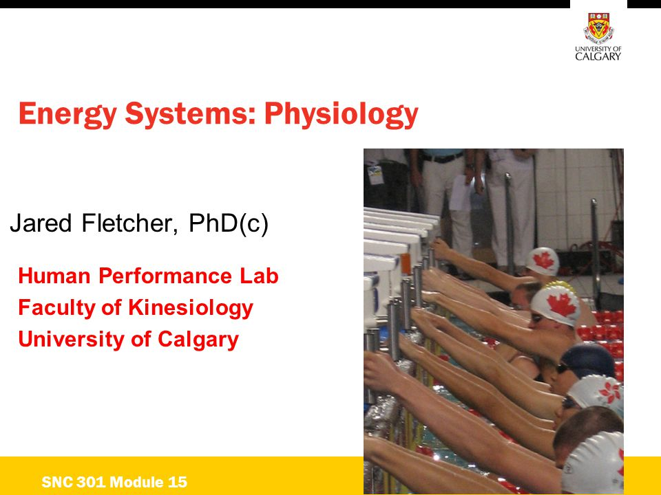 Energy Systems: Physiology