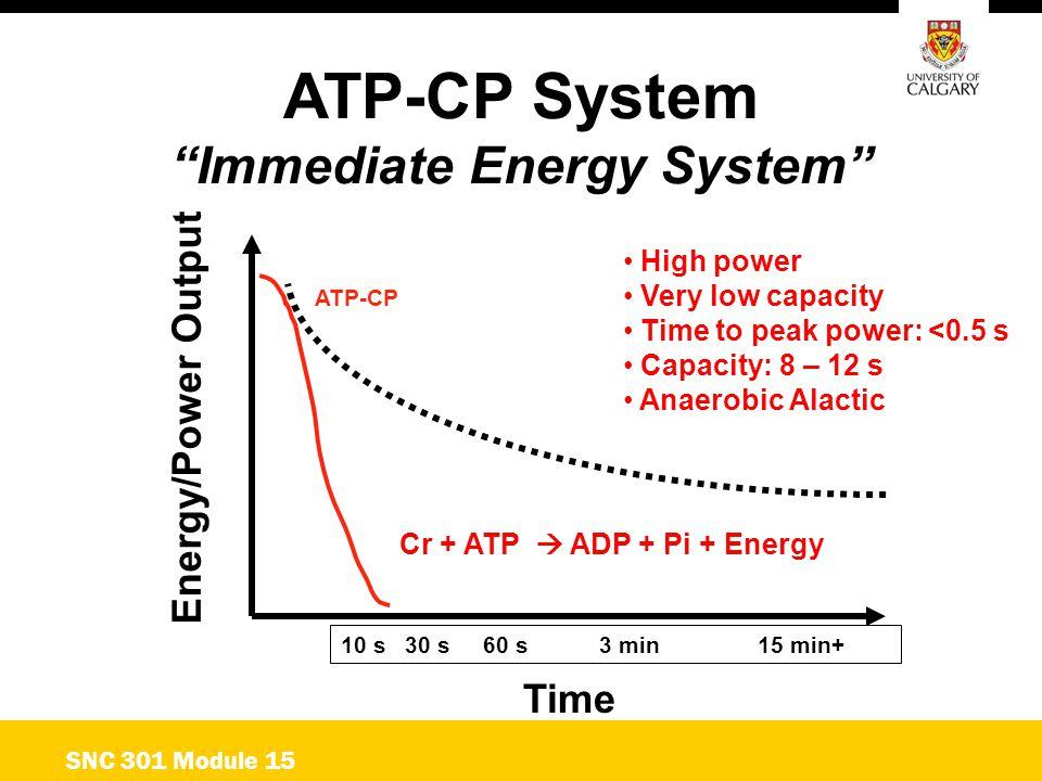 Immediate Energy System