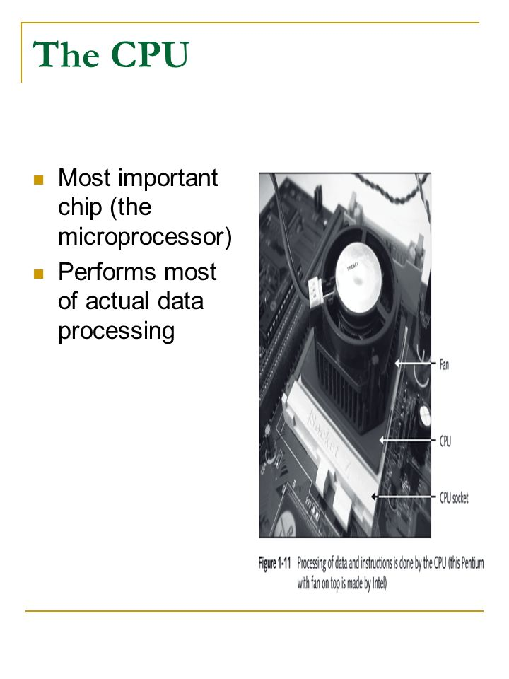 The CPU Most important chip (the microprocessor)