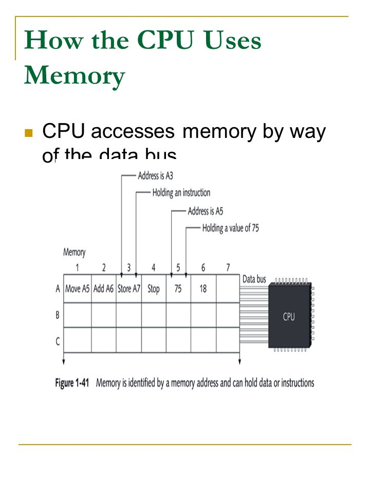 How the CPU Uses Memory CPU accesses memory by way of the data bus