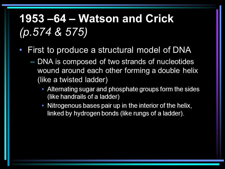1953 –64 – Watson and Crick (p.574 & 575)