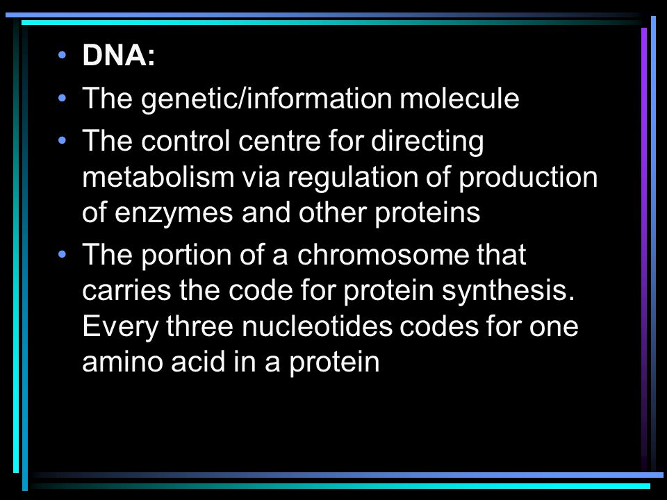 DNA: The genetic/information molecule. The control centre for directing metabolism via regulation of production of enzymes and other proteins.