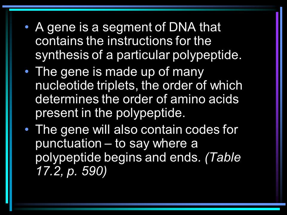 A gene is a segment of DNA that contains the instructions for the synthesis of a particular polypeptide.
