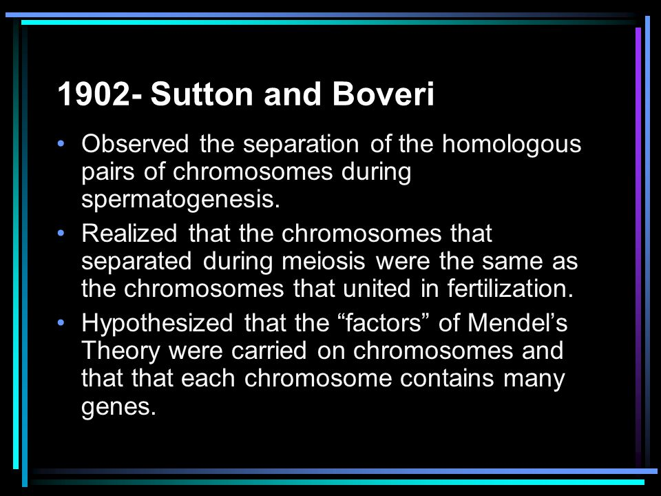 1902- Sutton and Boveri Observed the separation of the homologous pairs of chromosomes during spermatogenesis.