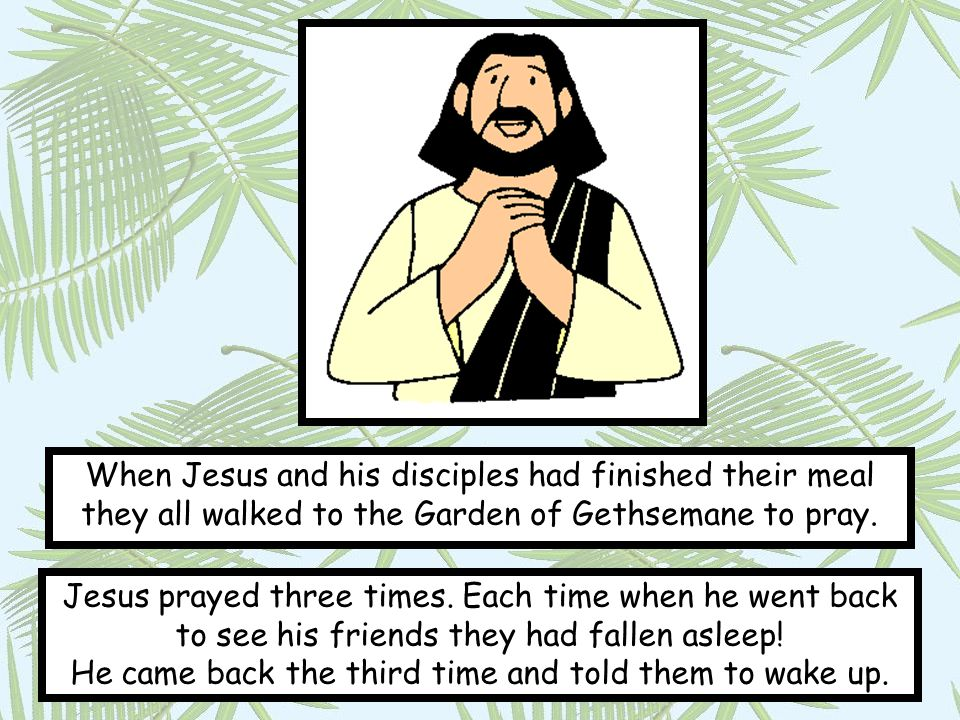 When Jesus and his disciples had finished their meal they all walked to the Garden of Gethsemane to pray.