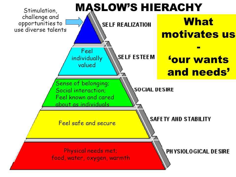 MASLOW'S HIERACHY What motivates us - 'our wants and needs'