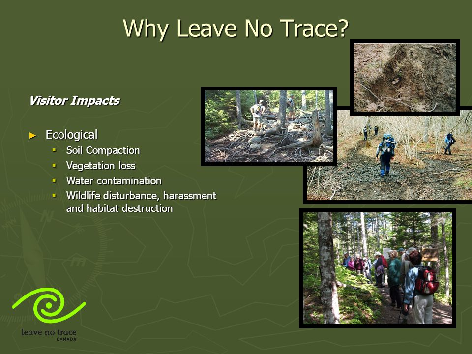 Why Leave No Trace Visitor Impacts Ecological Soil Compaction