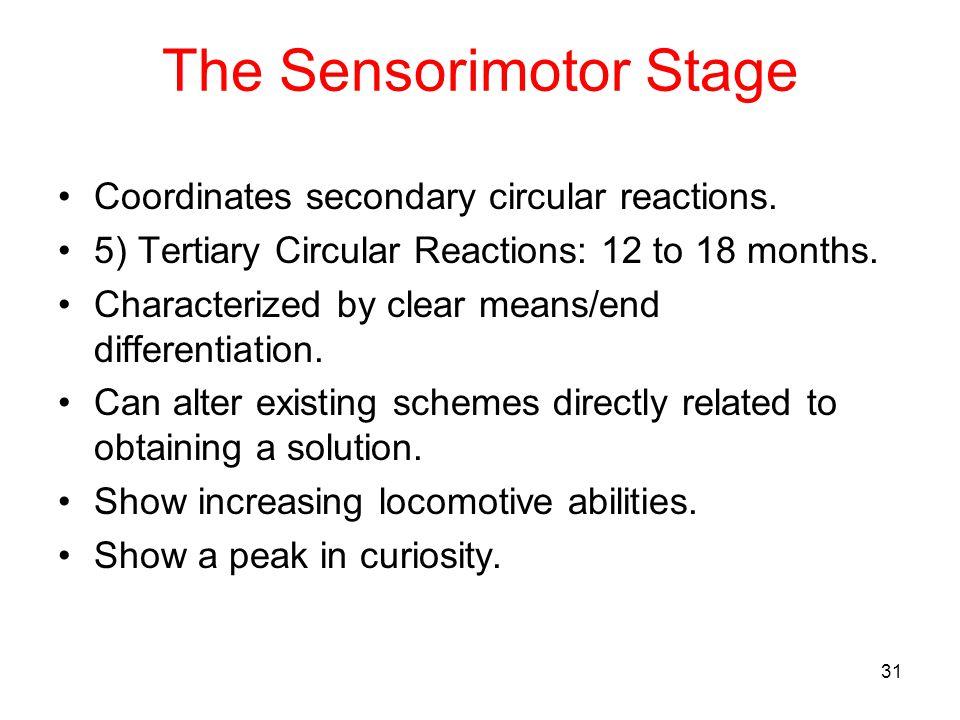 The Sensorimotor Stage