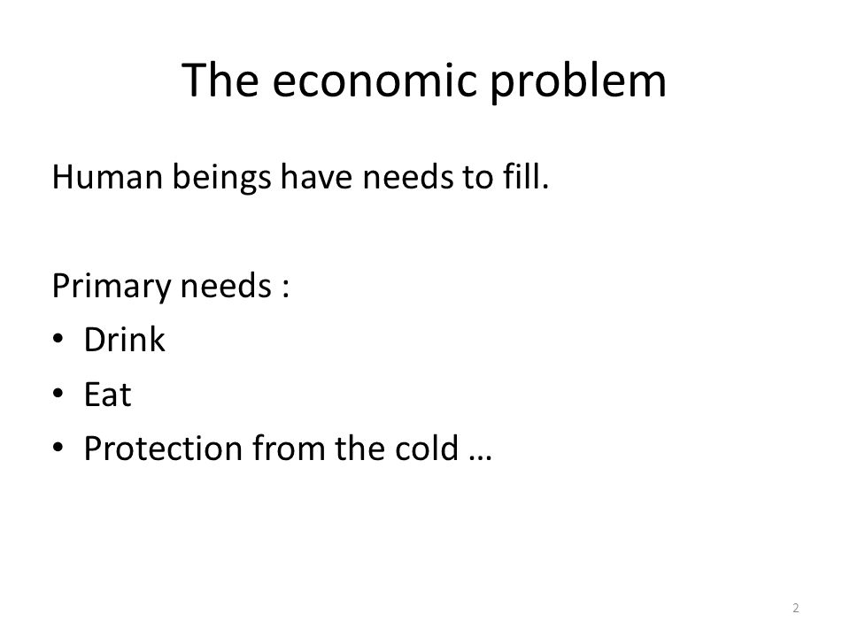 The economic problem Human beings have needs to fill. Primary needs :