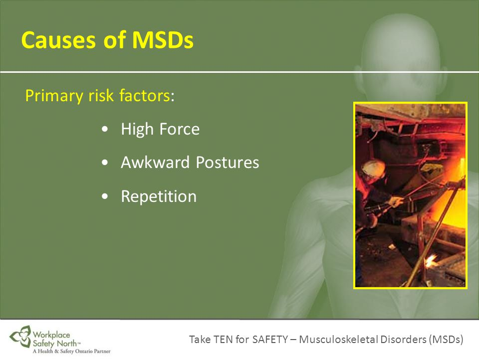 Causes of MSDs Primary risk factors: • High Force • Awkward Postures