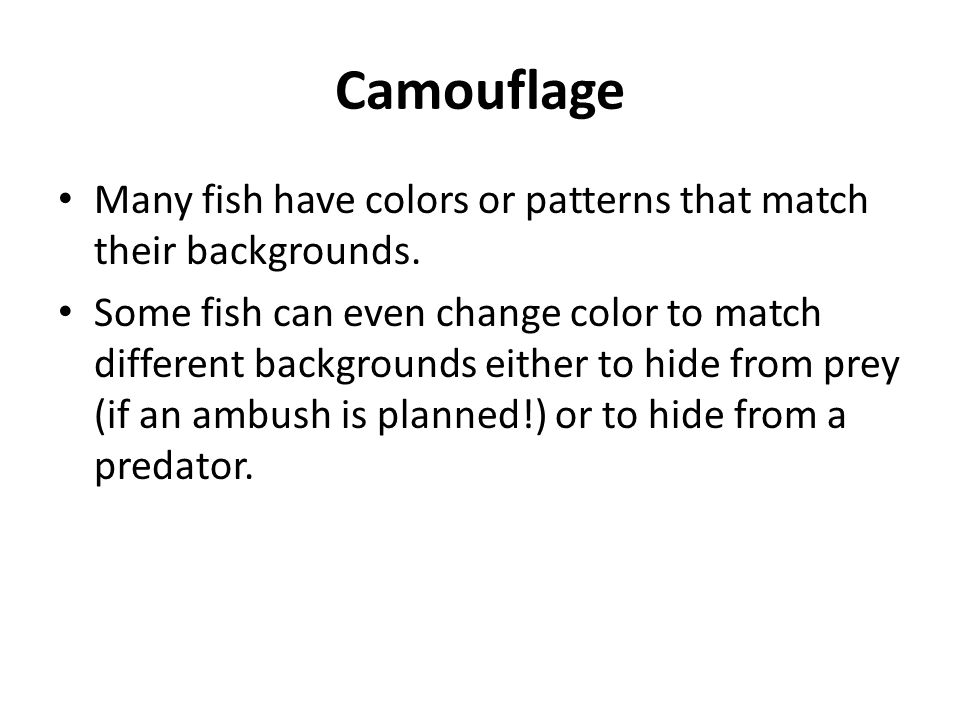 Camouflage Many fish have colors or patterns that match their backgrounds.