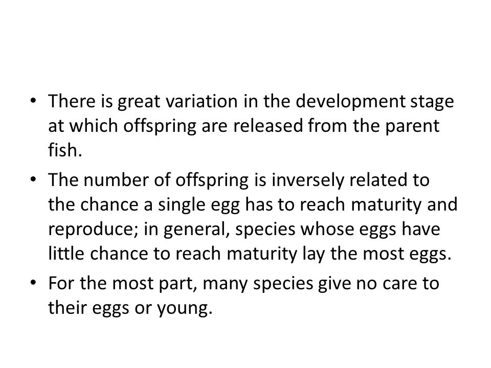 There is great variation in the development stage at which offspring are released from the parent fish.