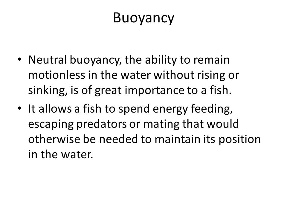 Buoyancy Neutral buoyancy, the ability to remain motionless in the water without rising or sinking, is of great importance to a fish.