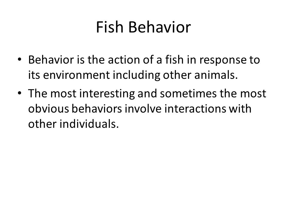 Fish Behavior Behavior is the action of a fish in response to its environment including other animals.