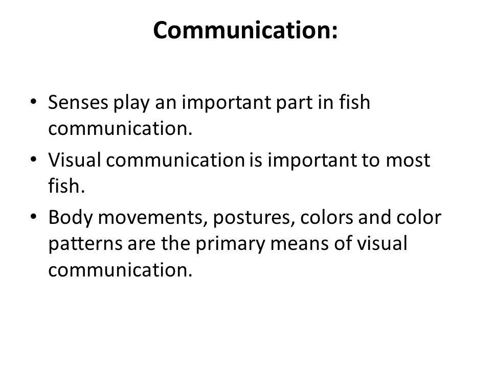 Communication: Senses play an important part in fish communication.