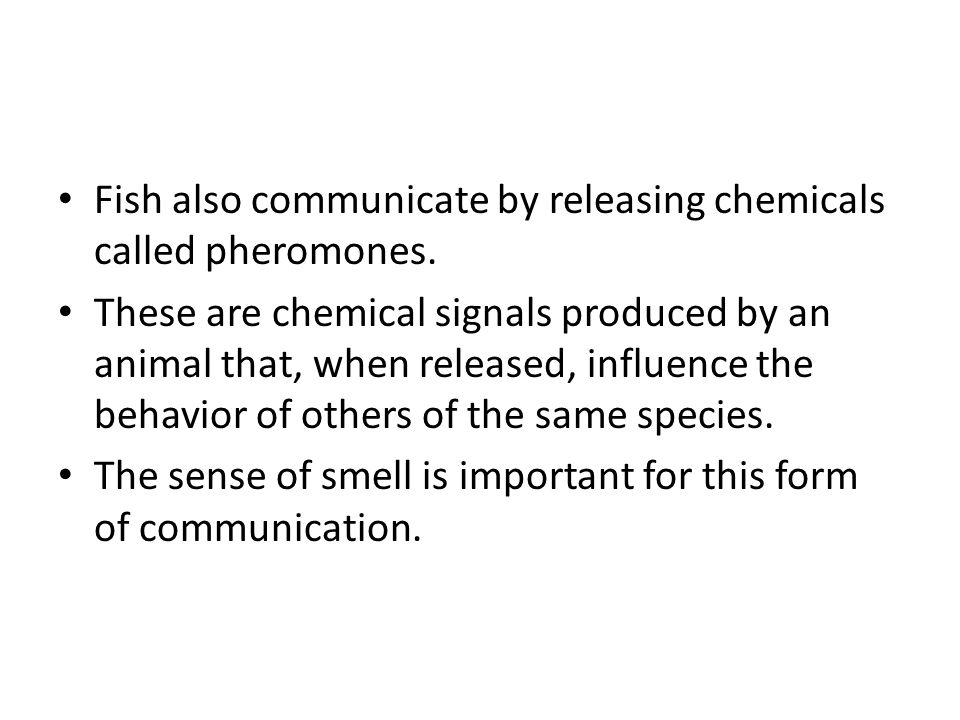 Fish also communicate by releasing chemicals called pheromones.