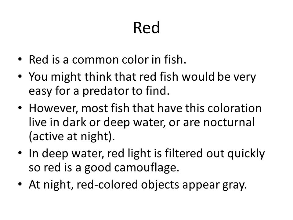 Red Red is a common color in fish.
