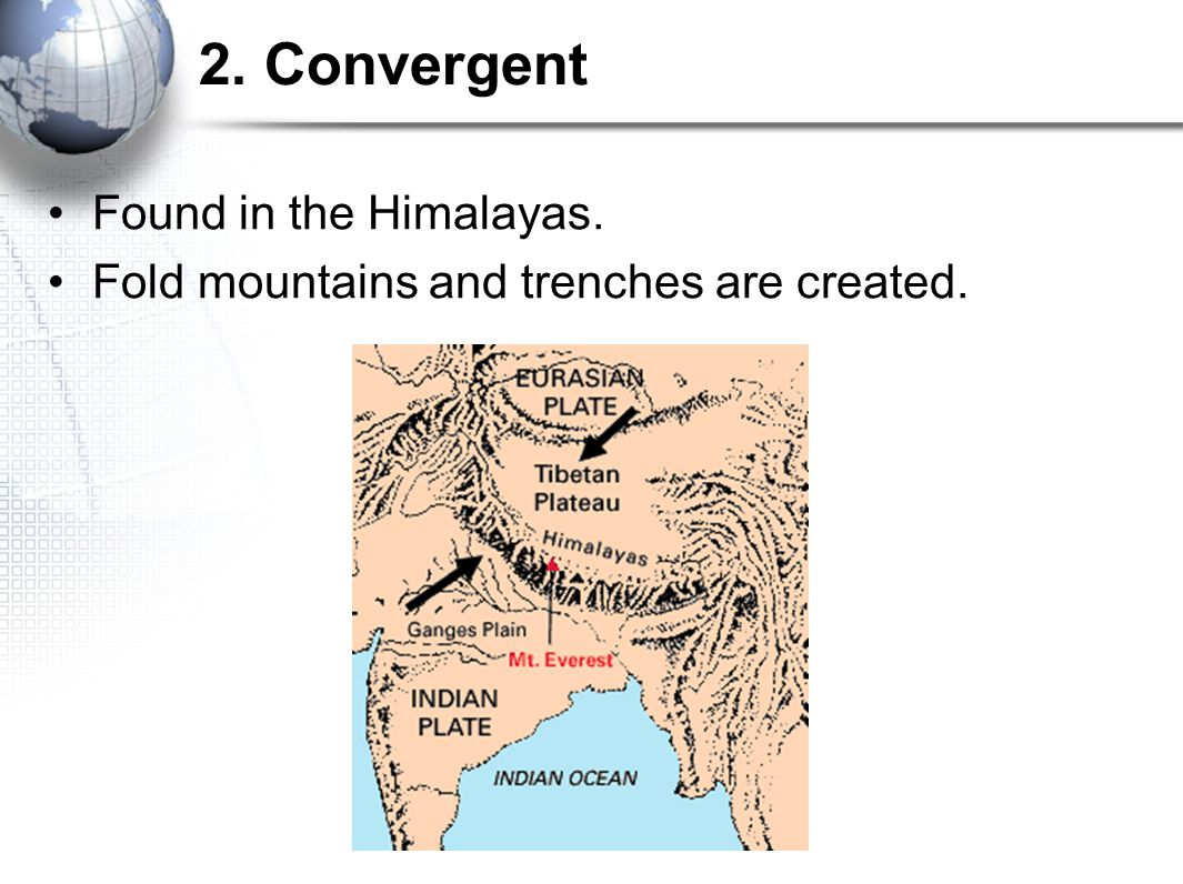 2. Convergent Found in the Himalayas.