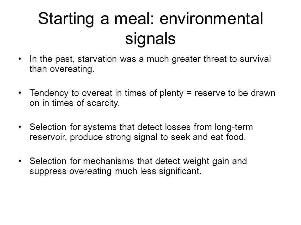 Starting a meal: environmental signals