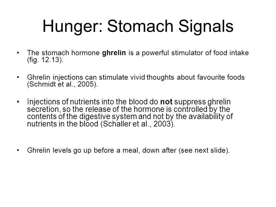 Hunger: Stomach Signals