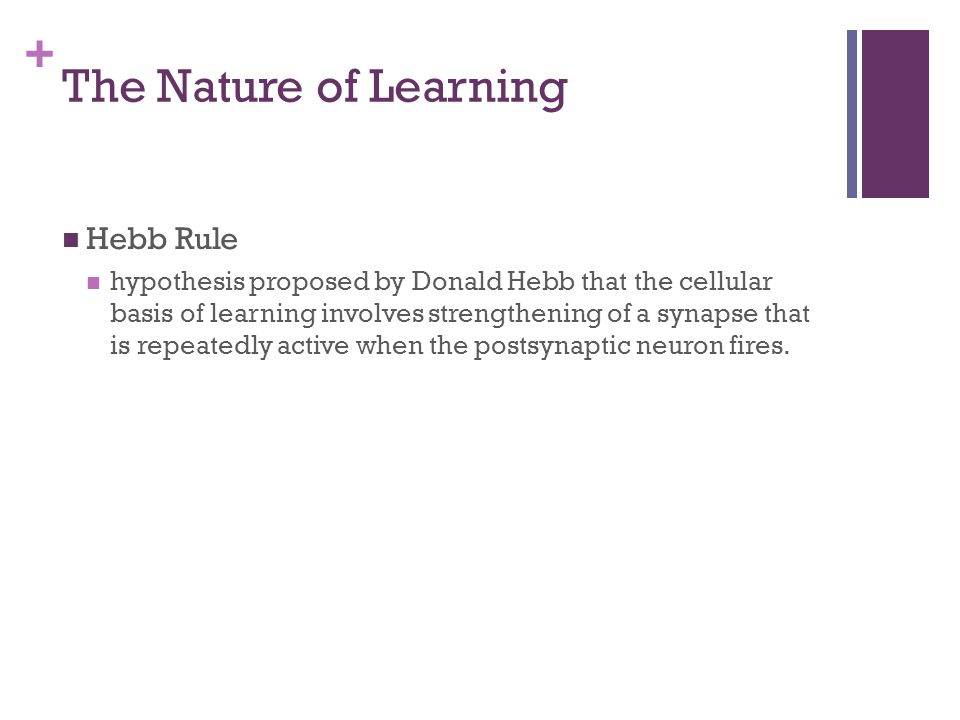 The Nature of Learning Hebb Rule