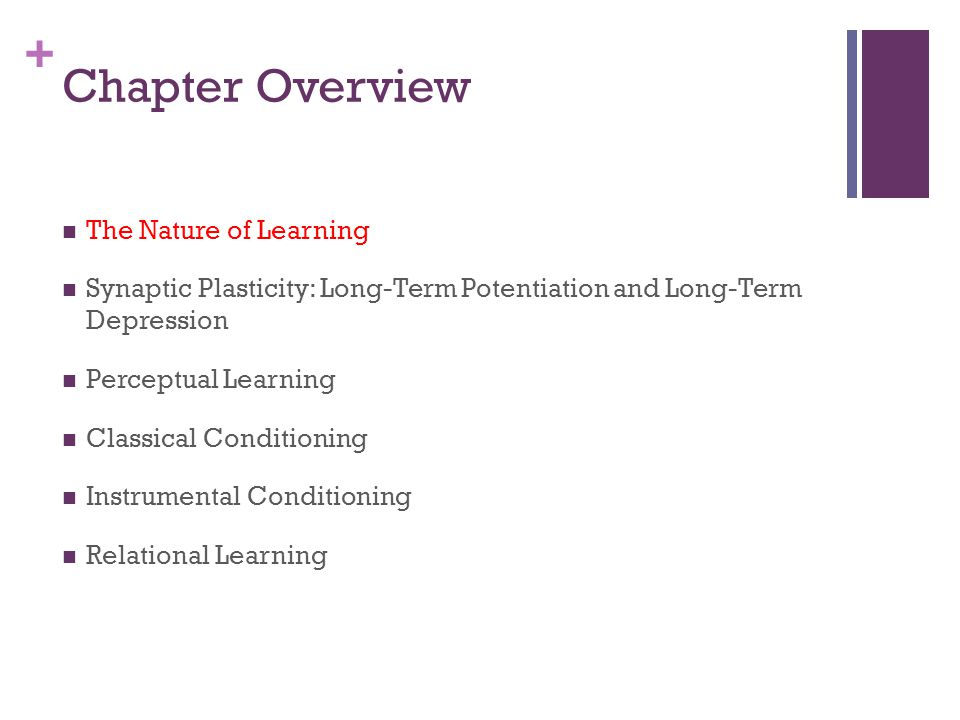 Chapter Overview The Nature of Learning
