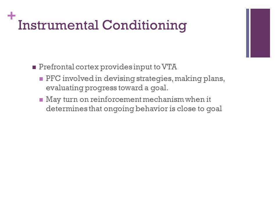 Instrumental Conditioning