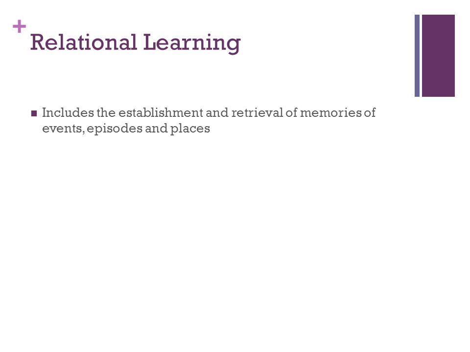 Relational Learning Includes the establishment and retrieval of memories of events, episodes and places.