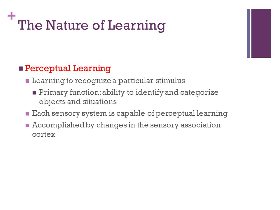 The Nature of Learning Perceptual Learning