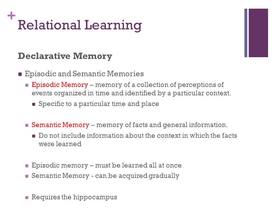 Relational Learning Declarative Memory Episodic and Semantic Memories