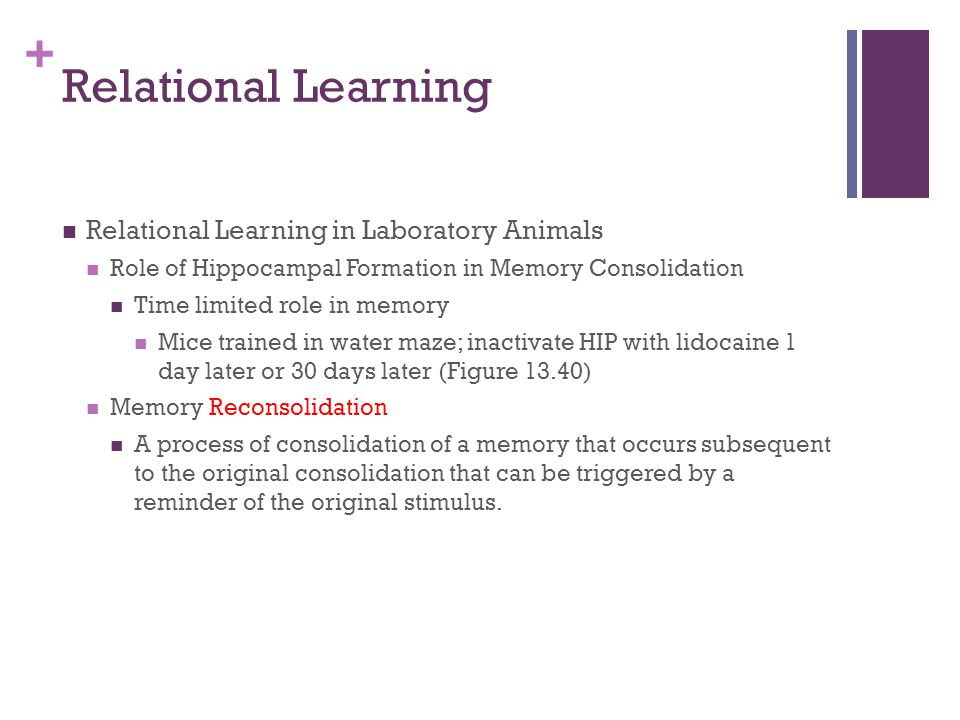 Relational Learning Relational Learning in Laboratory Animals