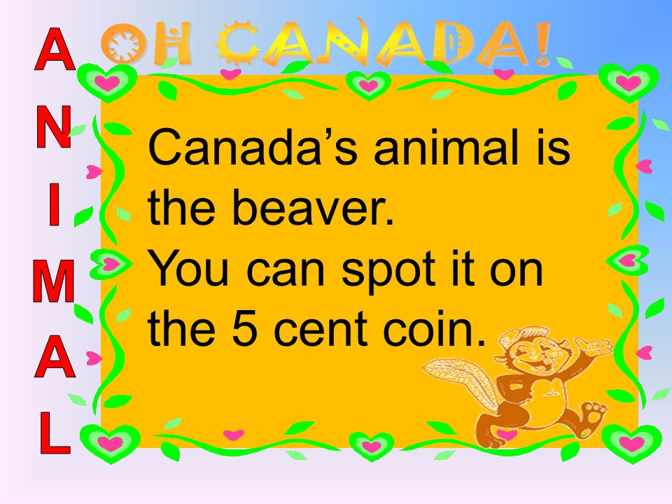 Canada's animal is the beaver. You can spot it on the 5 cent coin.
