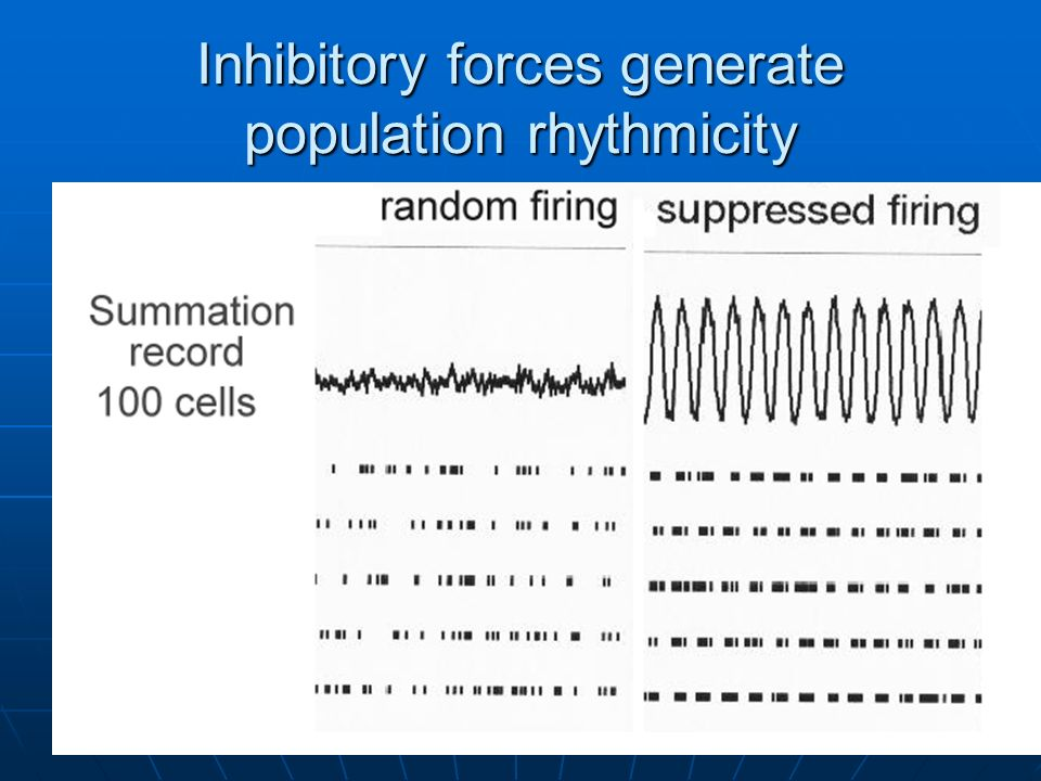 Inhibitory forces generate population rhythmicity