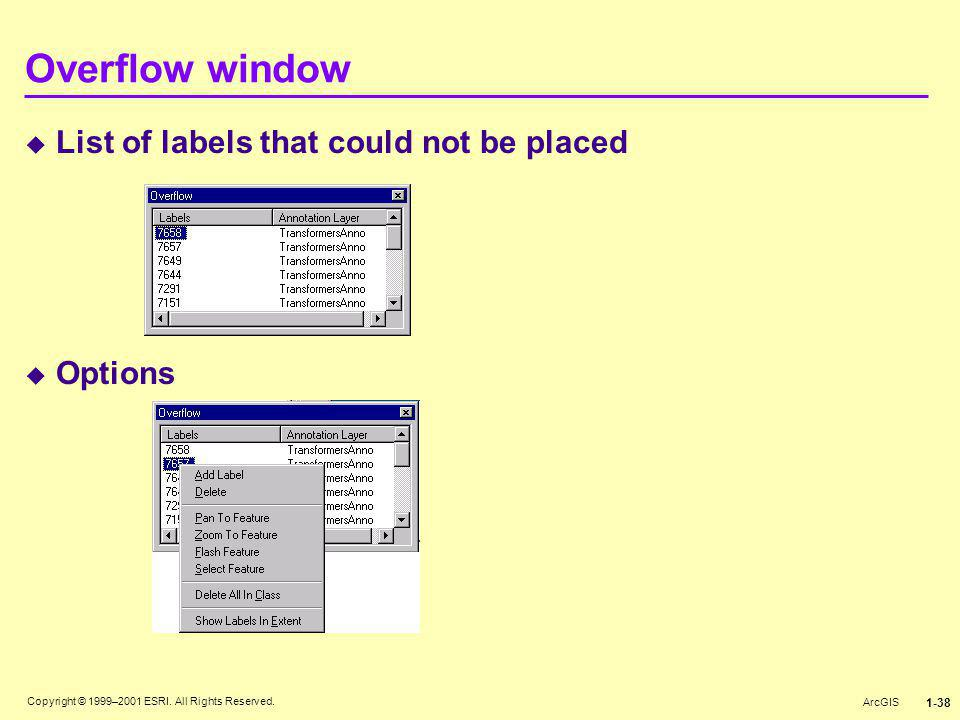 Overflow window List of labels that could not be placed Options