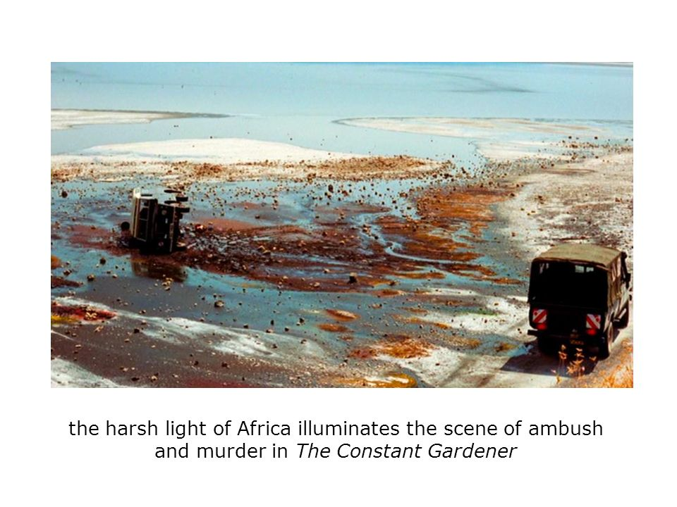 the harsh light of Africa illuminates the scene of ambush and murder in The Constant Gardener
