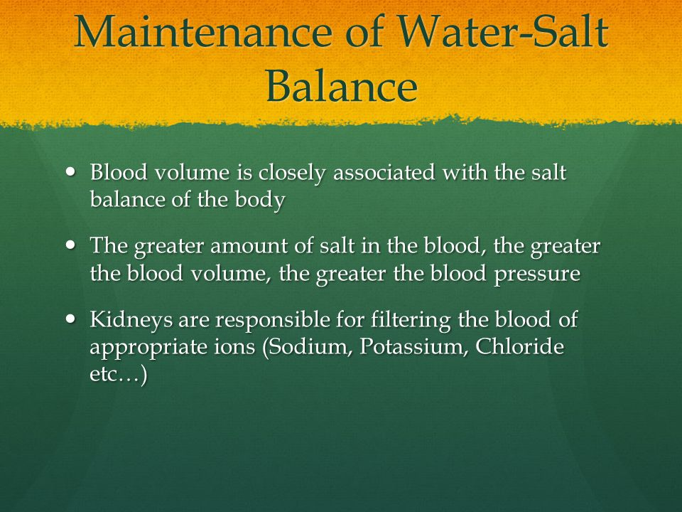 Maintenance of Water-Salt Balance