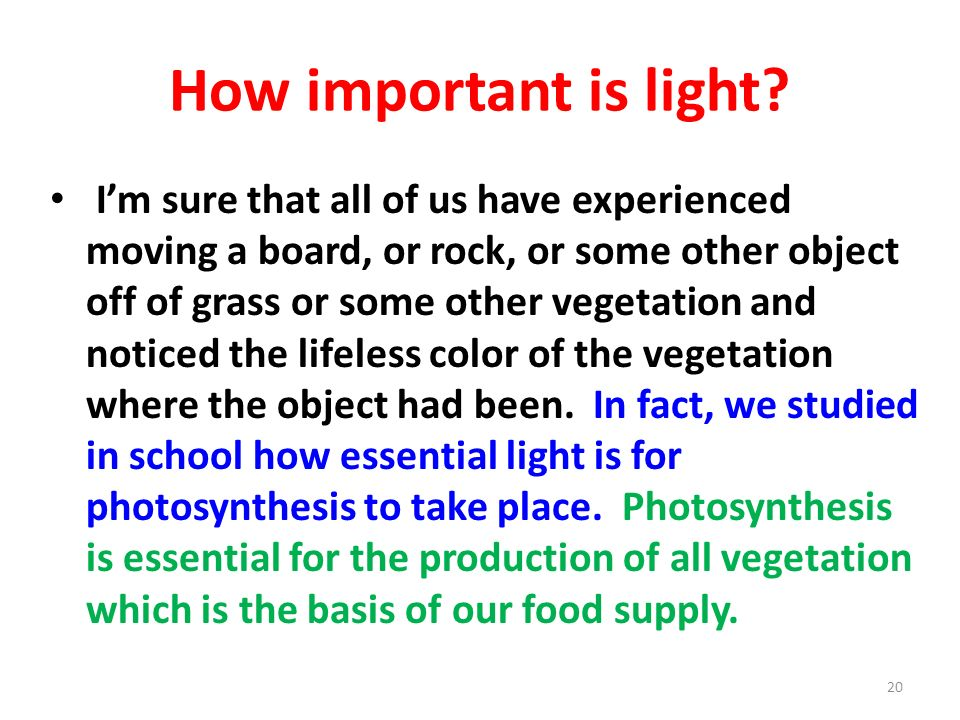 How important is light