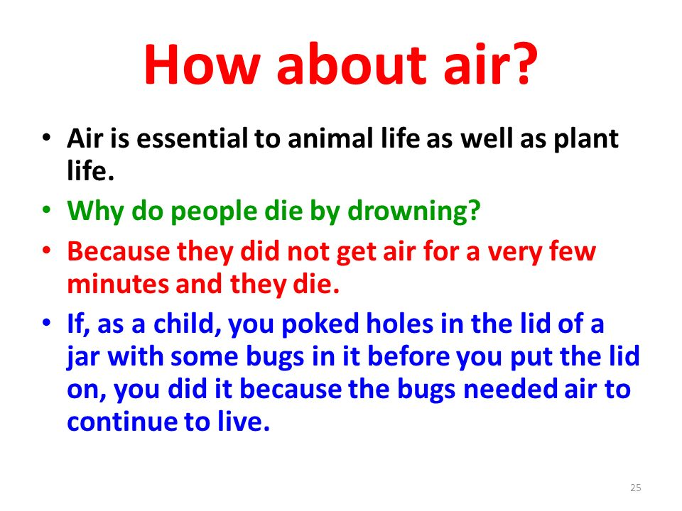 How about air Air is essential to animal life as well as plant life.