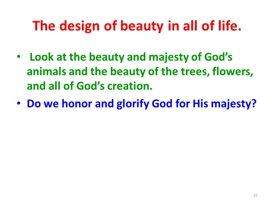 The design of beauty in all of life.