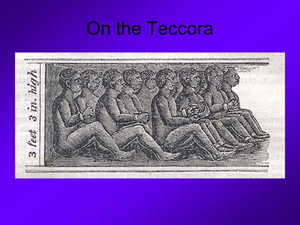 On the Teccora