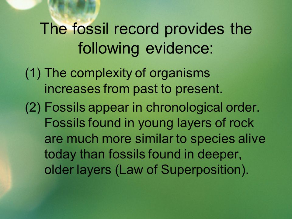 The fossil record provides the following evidence: