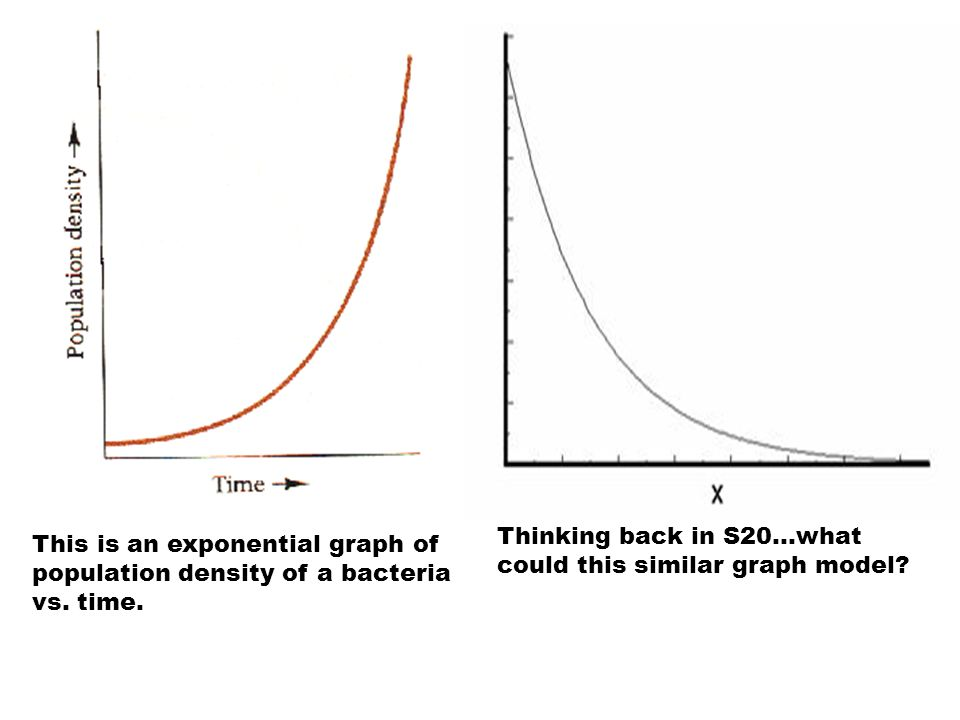 Thinking back in S20…what could this similar graph model