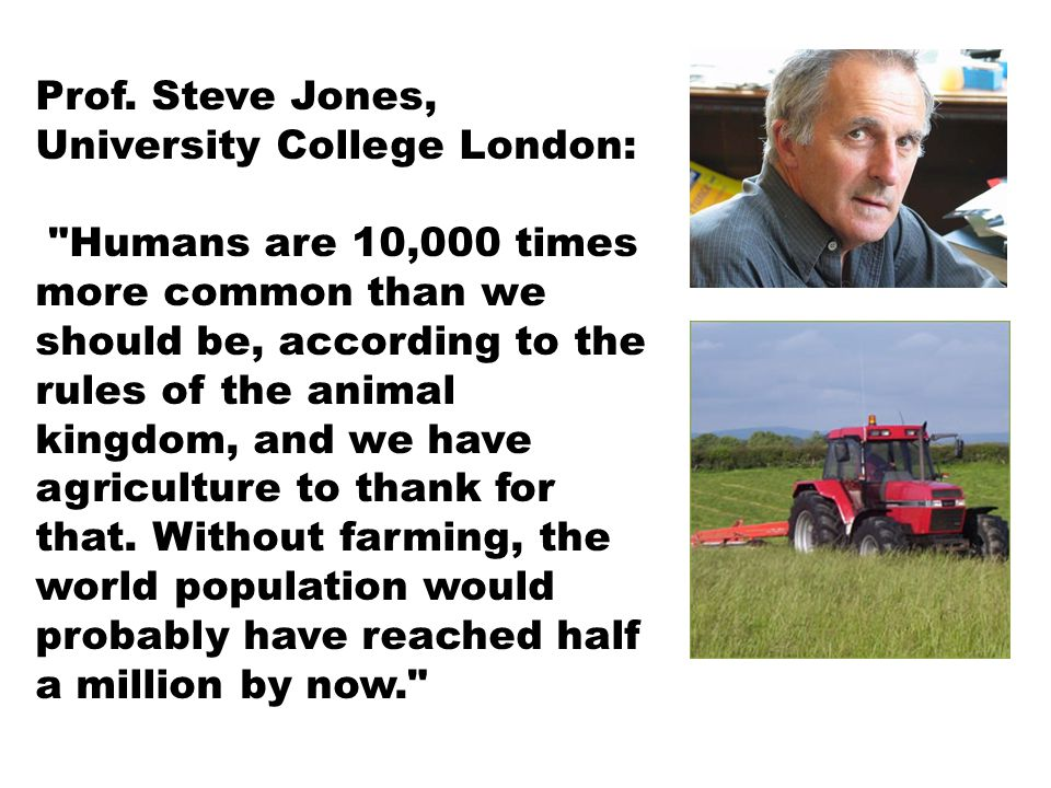 Prof. Steve Jones, University College London: