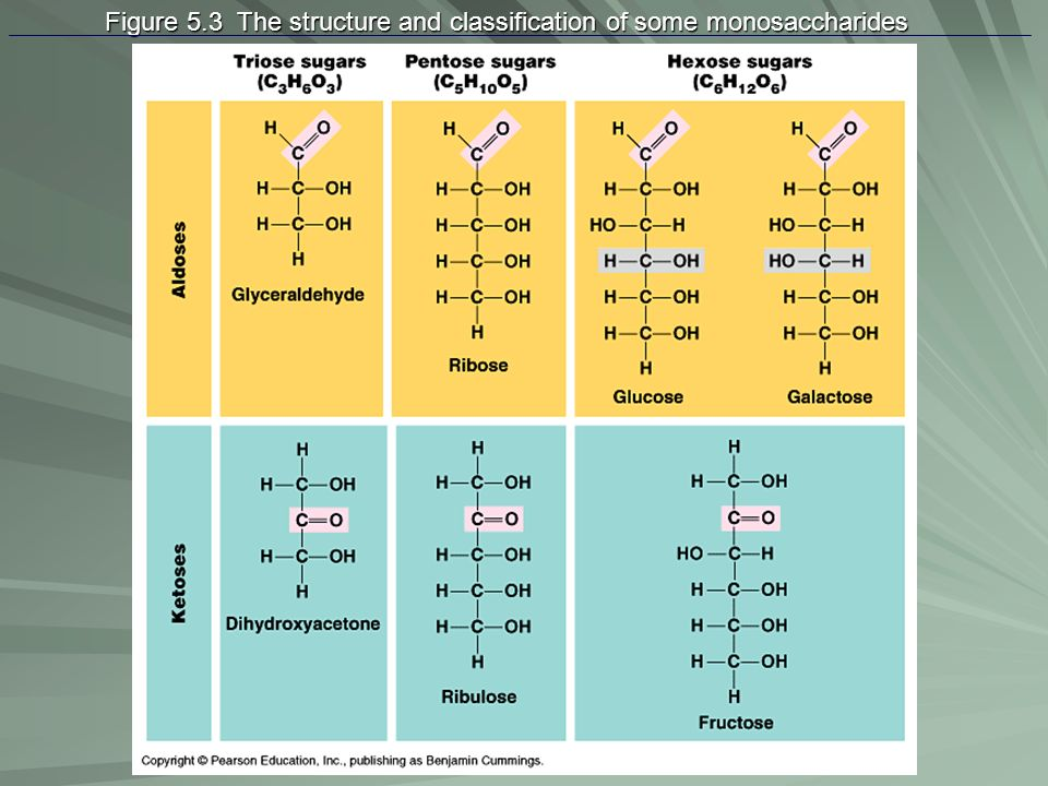 Figure 5.3 The structure and classification of some monosaccharides