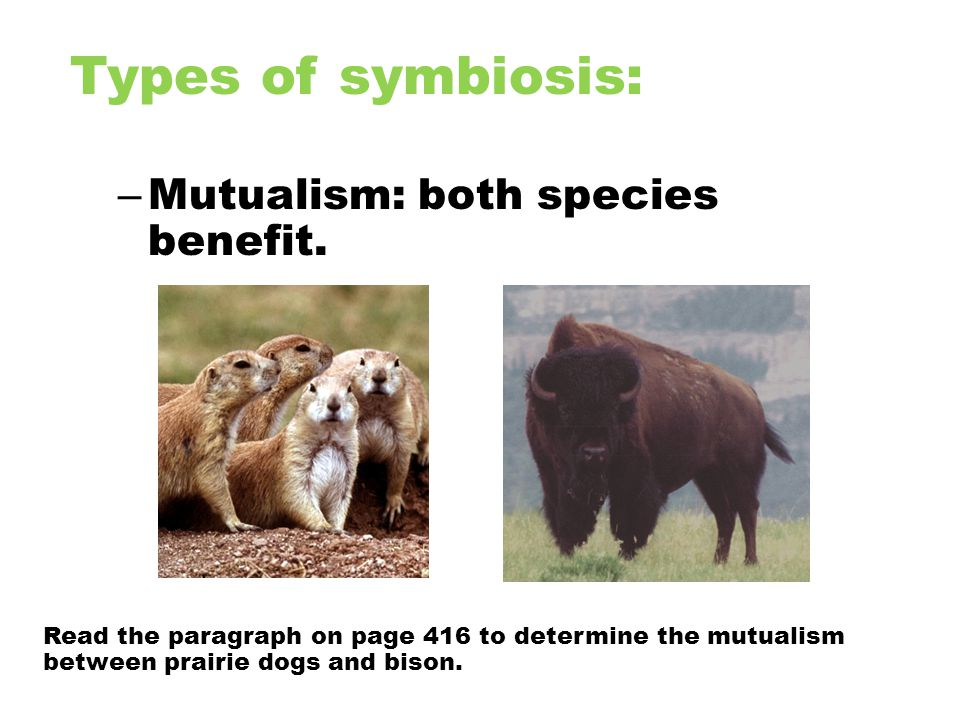 Types of symbiosis: Mutualism: both species benefit.