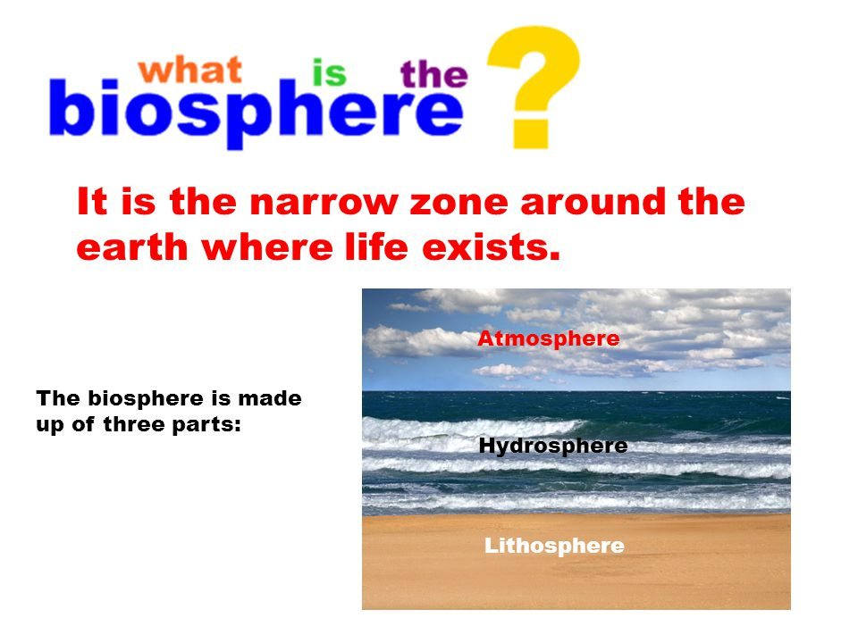 It is the narrow zone around the earth where life exists.